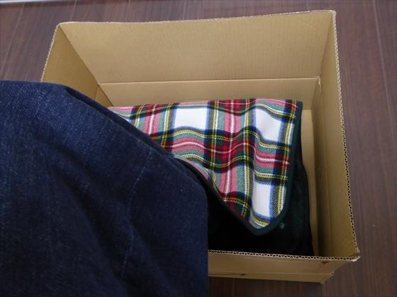 箱に足を入れた状態、横から撮った写真