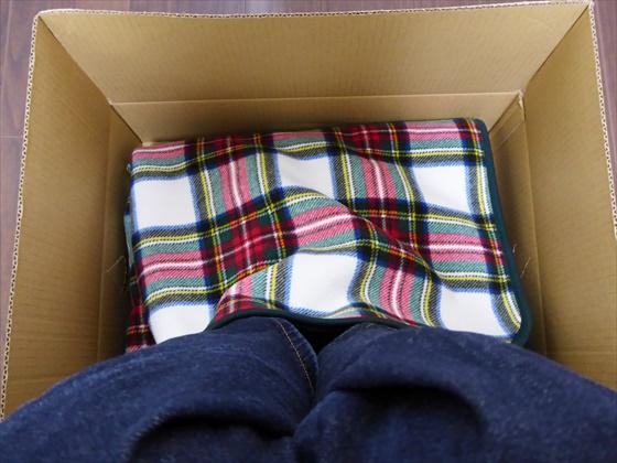 箱に足を入れた状態、上から撮った写真
