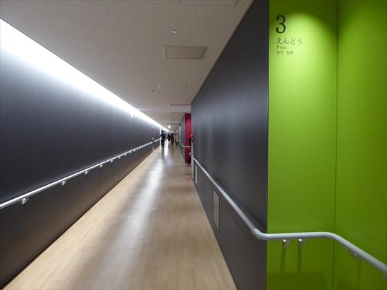 青果棟見学デッキの長い廊下