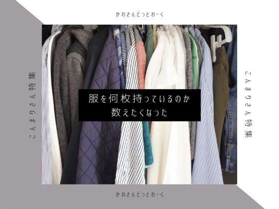 「こんまりさん特集」を見ていたら服を何枚持っているのか数えたくなったので数えてみました。