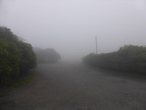 更に霧が濃くなる道