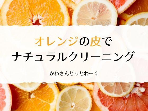 オレンジの皮でお掃除スプレーを作るアイキャッチ