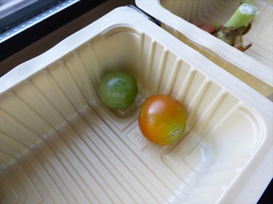 豆腐パックに入った青いトマト