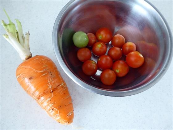 収穫した人参とミニトマト
