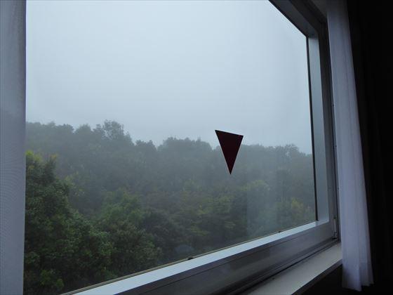 翌朝の部屋からの景色、霧がかって白い