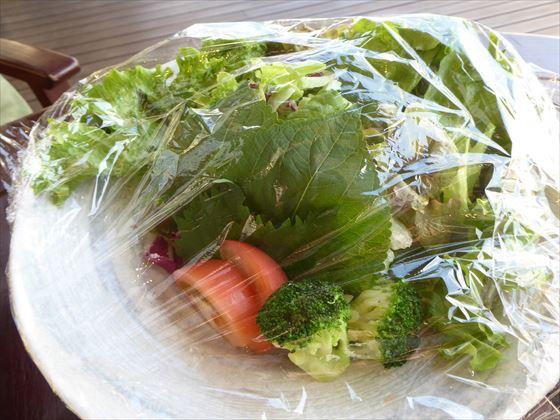 皿にのってラップされたサラダと包み菜