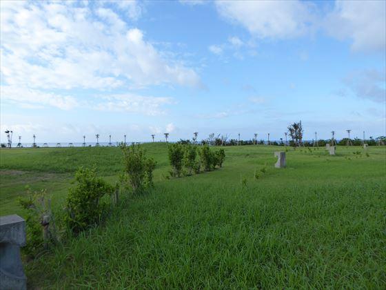 最終日の芝生広場の景色