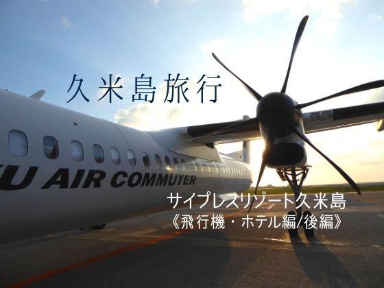 GoTo利用!クーポンに振り回される旅、サイプレスリゾート久米島に宿泊、後編
