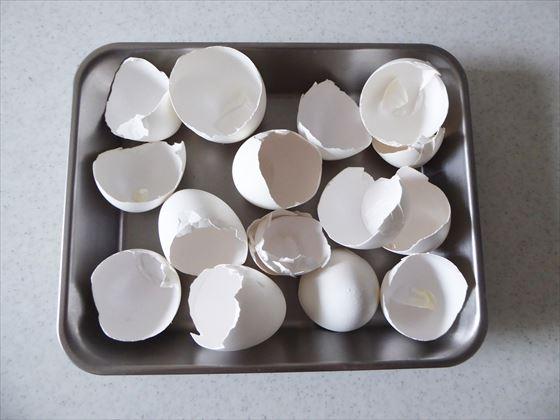 バッドに広げた卵の殻