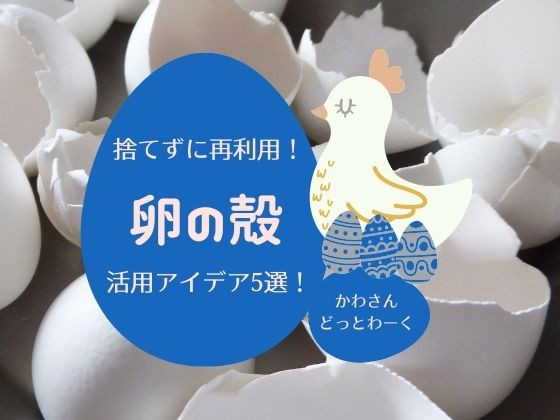 捨てちゃう前に再利用!「卵の殻」活用アイデア5選。