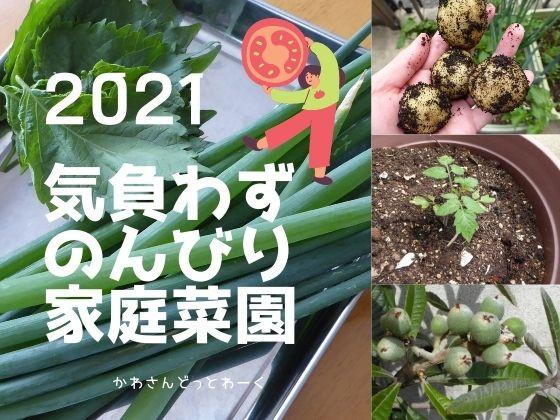2021年も低コスト!気負わない!のんびり!な家庭菜園。