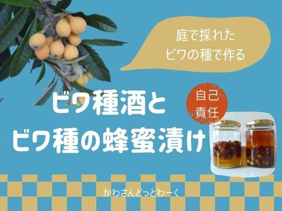 自己責任で!庭で収穫したビワの種でビワ種酒と蜂蜜漬けを作る。