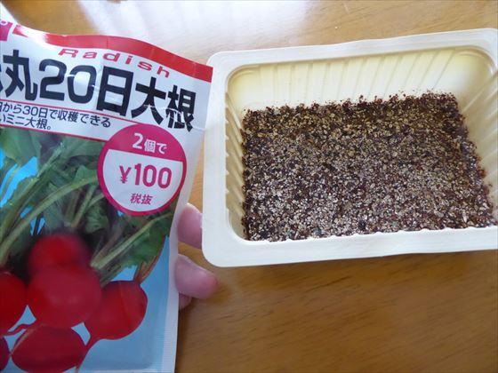 種の袋と豆腐パックにバーミキュライト敷いたところ
